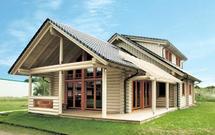 Domy drewniane. Sprawdź, jaki gatunek drewna wybrać do ich budowy