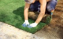 Trawnik z rolki - jak założyć trawnik w jeden dzień