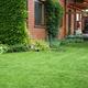 Zakładanie trawnika. Co wybrać - trawnik z rolki czy z wysiewu?