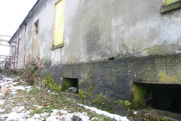Zawilgocone mury