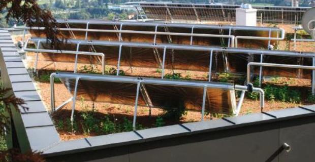 Kolektory słoneczne - zasada działania i budowa solarów
